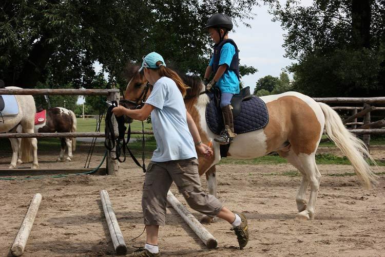 pony skola
