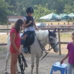 dětské tábory s poníky